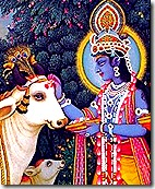 Lord Krishna with His cows