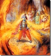 Krishna devouring a forest fire