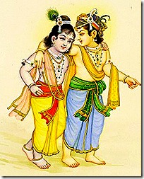 Balarama and Krishna in Vrindavana
