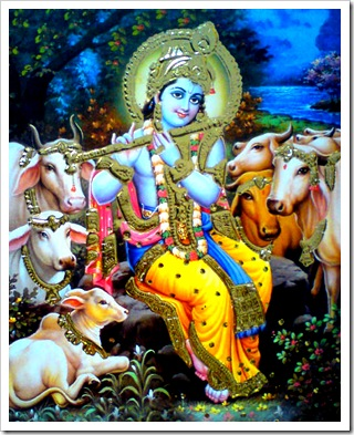 Lord Krishna in Vrindavana