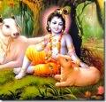 krishna_poster_CH82_l.jpg