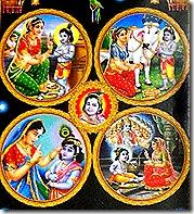 Krishna activities