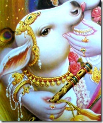 cow with Krishna