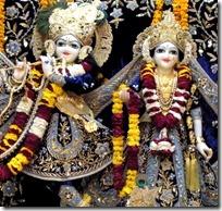 Shri Shri Radha Vrindavana-Chandra