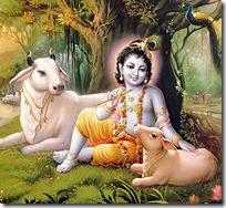 Krishna resting underneath tree