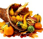 [Thanksgiving cornucopia]