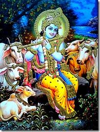 [Krishna in Vrindavana]