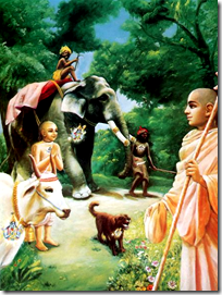 [the vision of the humble sage]