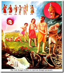 [the changing body]