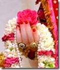 [flower for Krishna]