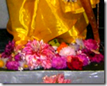 [flowers offered to Lord Rama]