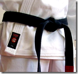 [black belt karate]