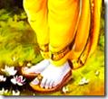 [Lord Rama's lotus feet]