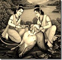 [Rama and Lakshmana with Jatayu]