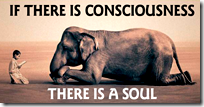 [animals have souls]