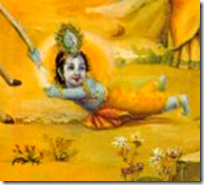 [Krishna riding calf's tail]