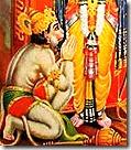 [Worshiping Rama's lotus feet]