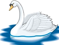 [swan]