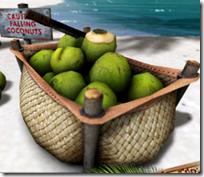 [coconuts]