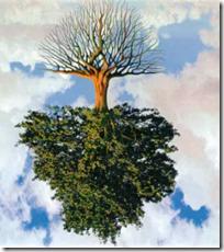 [inverted tree]