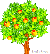 [fruit tree]