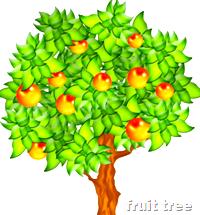 [fruit tree]