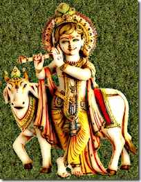 Krishna_flute3_grass_cartoon