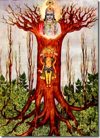 [Bhagavad-gita tree]