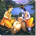 [Rama with Jatayu]