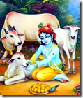 [Krishna with cows]
